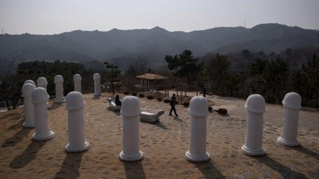 Parte das 50 esculturas de pênis gigantes que existem no parque