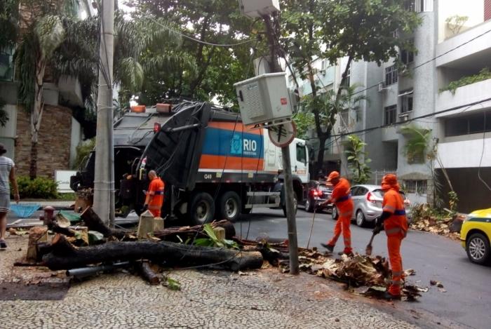 34 quedas de árvores foram registradas no temporal