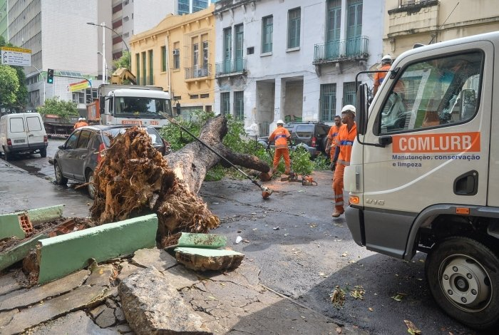 Queda de árvore no Centro do Rio.