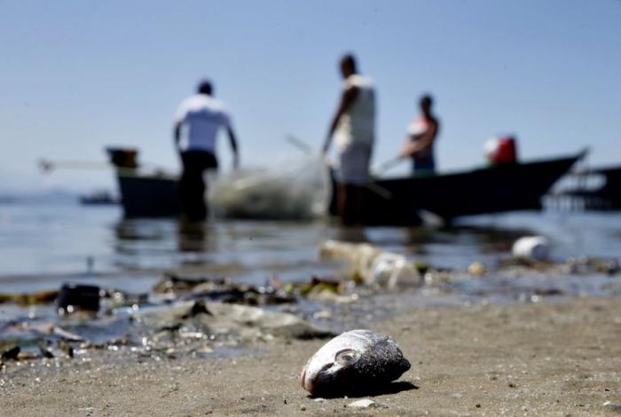 Mesmo poluída, Baía de Guanabara é fonte de renda para milhares de pescadores     (Arquivo/Tânia Rêgo/Agência Brasil)