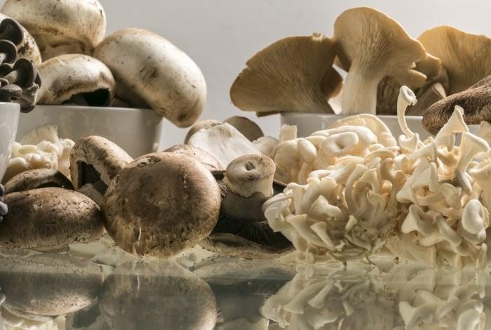 Chef participa de ação na Organomix para desmistificar o uso de cogumelos