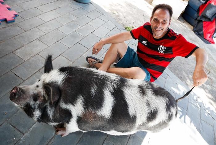 A porquinha de estimação Abigail