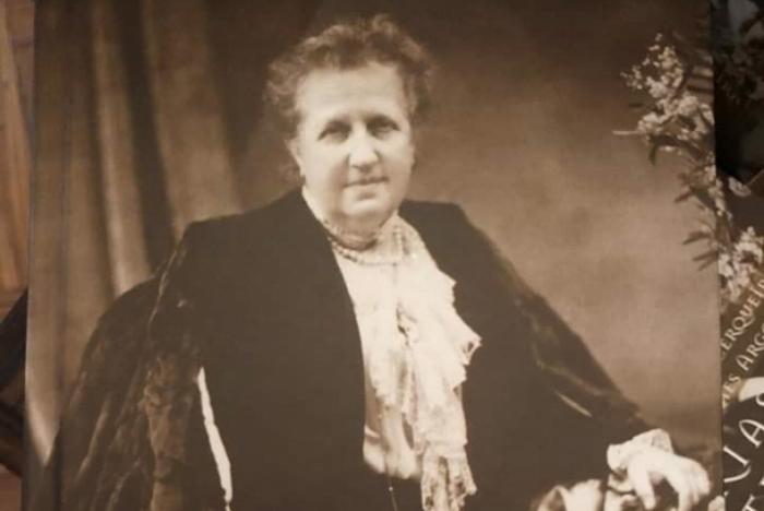 Alegrias e Tristezas: Estudos sobre a Autobiografia de D. Isabel do Brasil