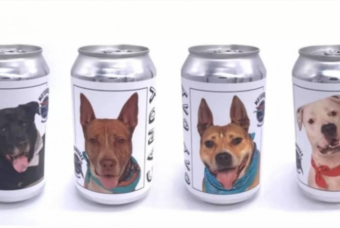 Imagem das latas de cerveja com os cães escolhidos para a campanha