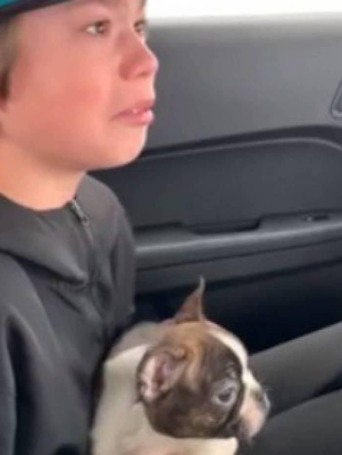Pai morre e deixa cachorro de presenta para filho