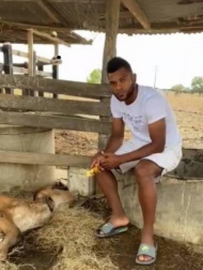 Borja alimenta a vaca, que ficou muito debilitada