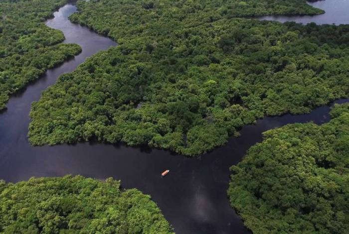 Amazônia pode ser 'maior repositório de coronavírus do mundo', diz cientista brasileiro