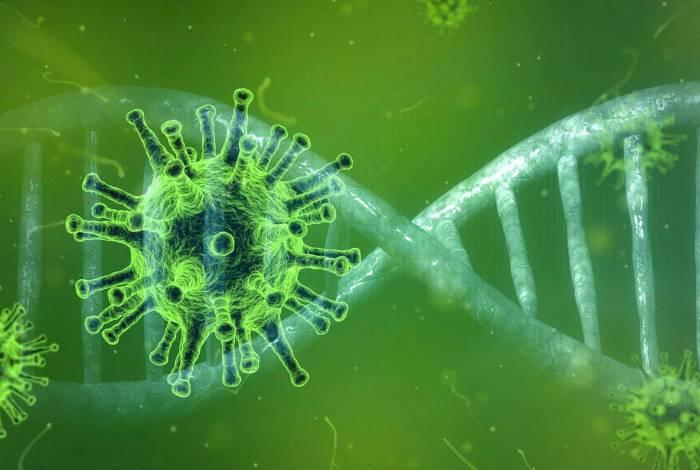 Segundo cientista, vírus se originou em morcego