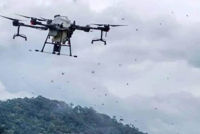 Drones com veneno são enviados para conter nuvem com bilhões de gafanhotos