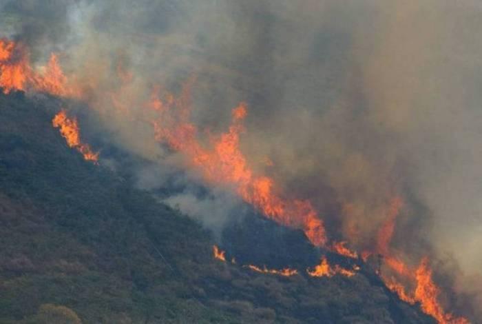 Mourão disse que a abordagem centrada unicamente na repressão aos crimes ambientais não é efetiva