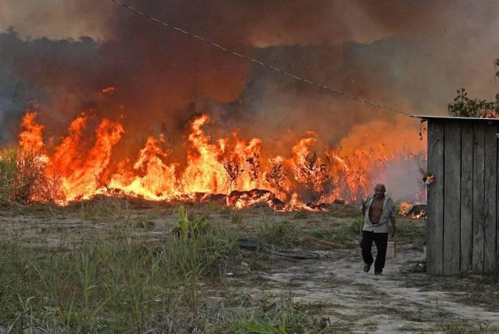 Vice-presidente disse que tem recebido apoio de várias empresas brasileiras para combater o desflorestamento da Amazônia