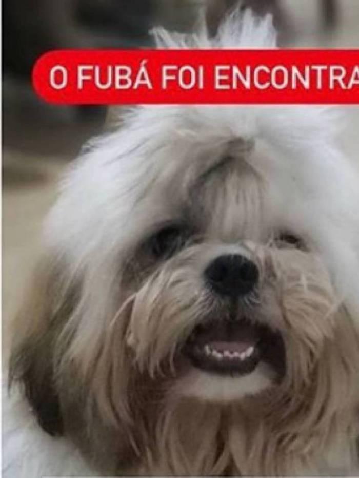 Fubá foi encontrado após ser levado em assalto a carro por criminosos em São Gonçalo