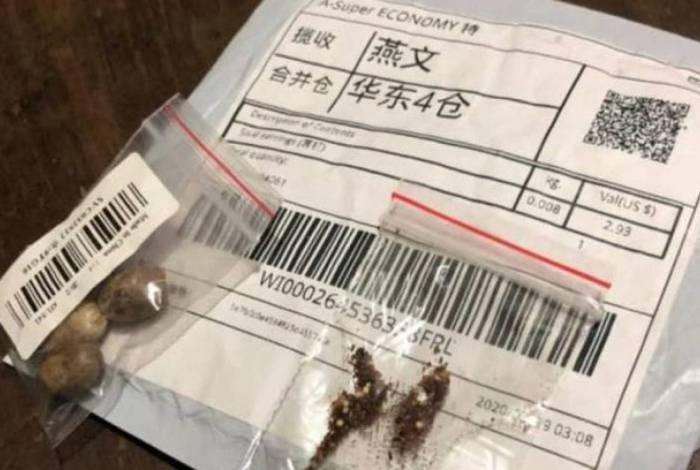 Misteriosas sementes vindas da China