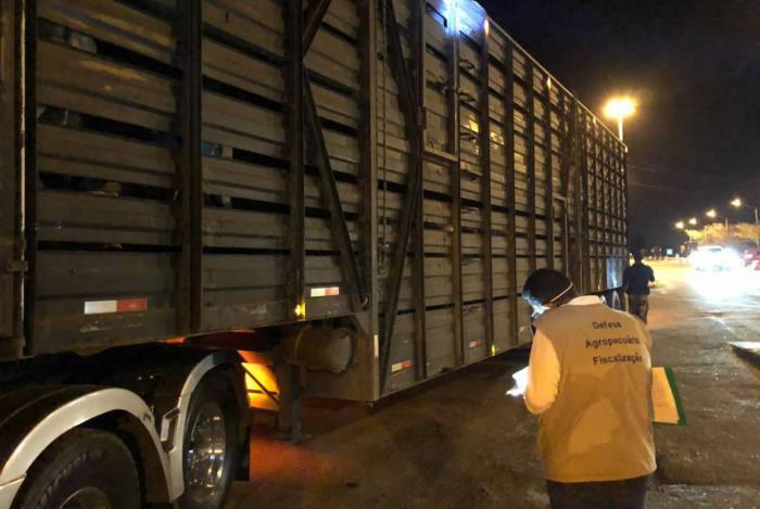Ação policial que apreendeu caminhão fazendo transporte ilegal de carne