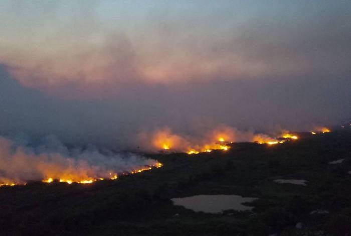 Incêndios florestais no Pantanal consumiram pelo menos 2,3 milhões de hectares do bioma da região