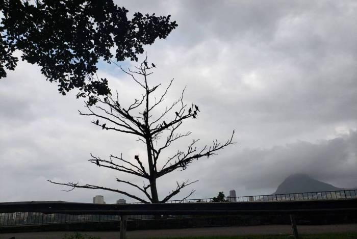 Tempo fecha na Lagoa Rodrigo de Freitas, na Zona Sul do Rio