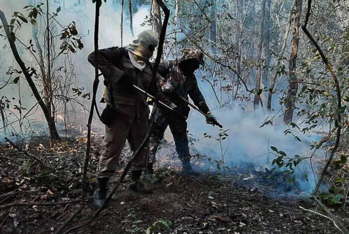 Força Nacional de Segurança Pública, incêndio no pantanal