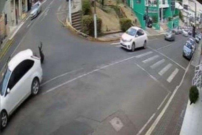 Mulher se joga de carro em movimento para fugir de assédio