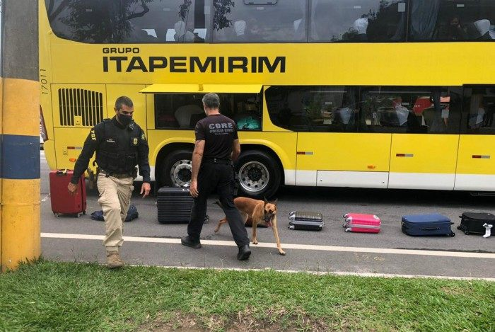 A ação integrada contou com a atuação de cães de faro da CORE e do Grupamento de Operações com Cães da PRF
