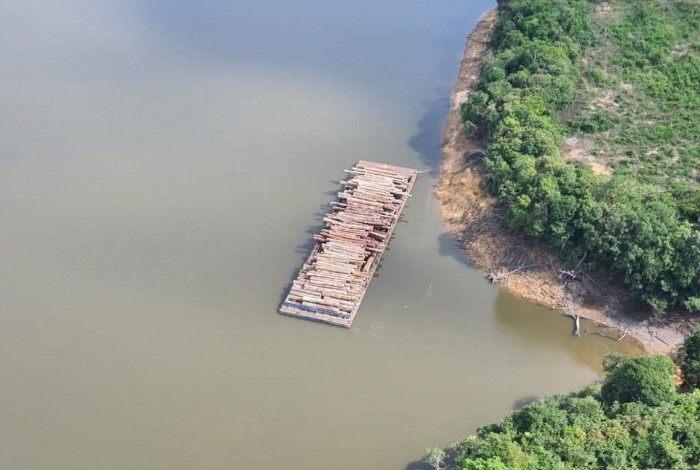 Apreensão de madeira nativa da história do Brasil, feita pela Polícia Federal na divisa do Pará com o Amazonas