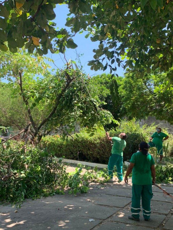 Mutirão de recuperação do Parque Pinto Teles