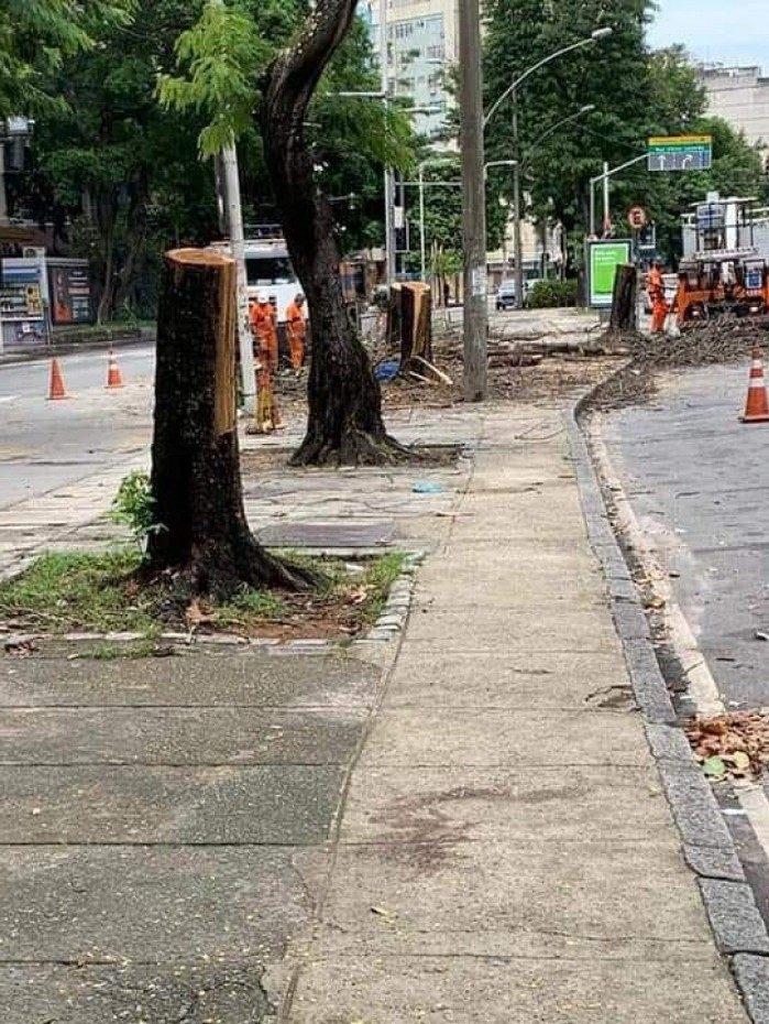 Árvores em grande quantidade estão sendo podadas no município do Rio de Janeiro