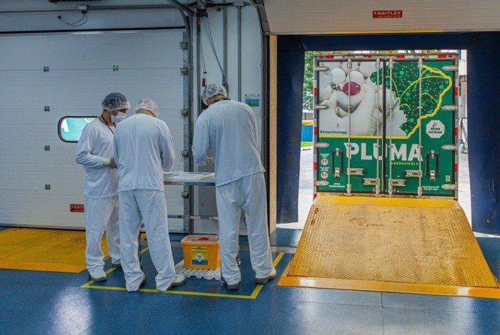 Butantan inicia a produção da ButanVac