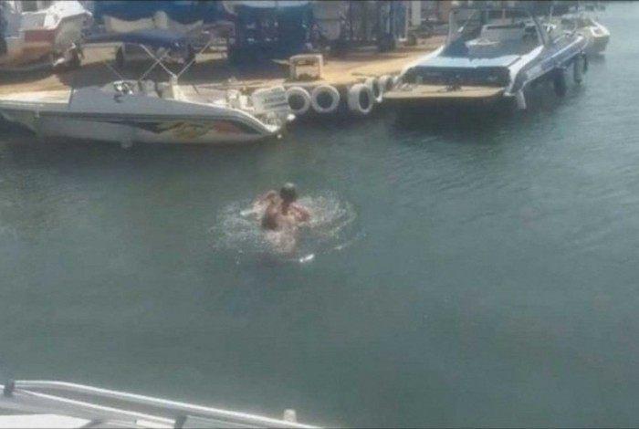 Homem é mordido por Capivara enquando nadava em Brasília