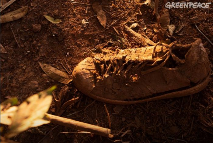 Greenpeace faz campanha contra Vale após tragédia em Brumadinho