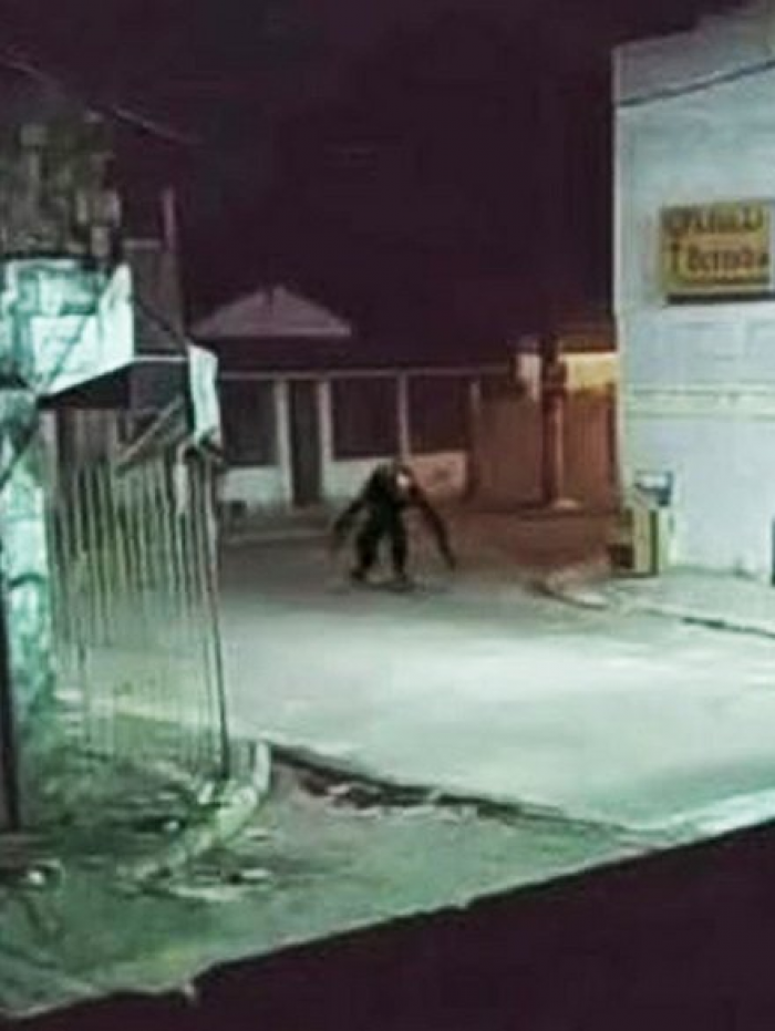 Boato de 'criatura estranha' assusta moradores de ilha na Bahia